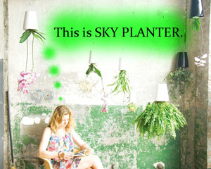 skyplanter2